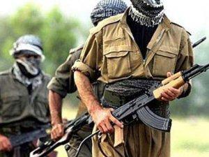 Şırnak'ta bu kez 11 PKK'lı teslim oldu