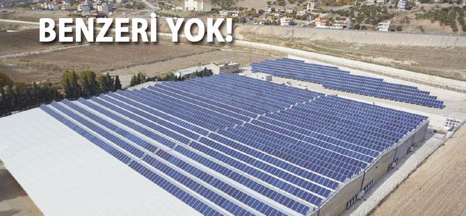 Kahramanmaraş'ta benzersiz güneş enerjisi projesi