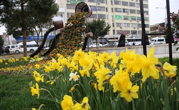 Laleler ve Mevsimlik Çiçekler Kent Estetiğine Güzellik Katıyor