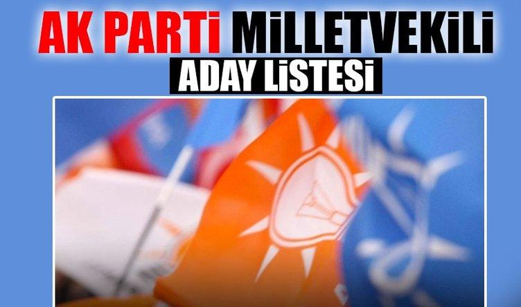 Ak Parti Siirt Milletvekili Adayları belli oldu