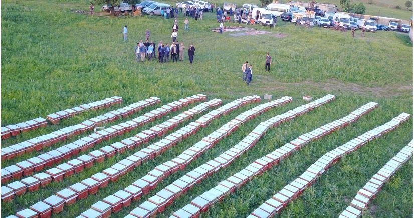 Şİrvan'da Arılı Kovan dağıtımı yapıldı