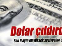 Dolar çıldırdı !