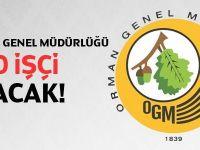 Orman Genel Müdürlüğü 500 eleman Alım İlanı 2014