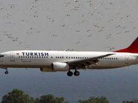 Atatürk Havalimanı'nı kuşlar bastı