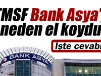 TMSF Bank Asya'ya el koydu .. Peki neden bunu yaptı?