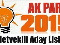 Akp Siirt Milletvekili Adayları