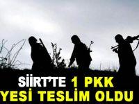 Pervari'de 1  PKK'lı teslim oldu