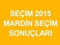 MARDİN-Dargeçit  Genel Seçim Sonuçları-2015