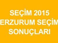 ERZURUM-OLTU Genel Seçim Sonuçları
