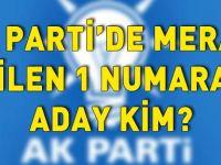 Siirt Ak Parti Adayları Kim ?