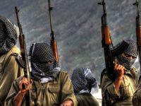 Baykan'da 1 PKK'lı öldürüldü