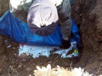 Eruh'ta PKK'nın kış yapılanmasına darbe