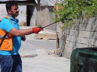 Siirt'te ilaçlama çalışmaları aralıksız devam ediyor