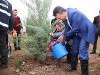 Siirt Belediyesi 1050 Fidan'ı Toprakla Buluşturdu