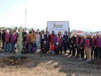 Gönül Elçileri Projesi Kapsamında Bereket Ormanı'na Fidan Dikmeye Devam Ediliyor