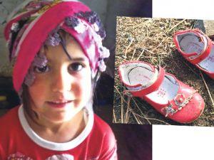 Van'da Kayıp Çocuk Nehir Aslan Arama Çalışmaları Sürüyor(7.Gün)