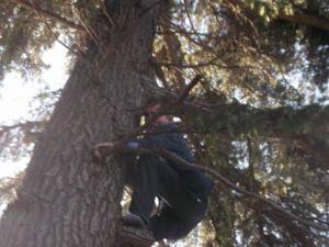 Hastane Bahçesinde Ağaca Çıkarak İntihara Kalkıştı
